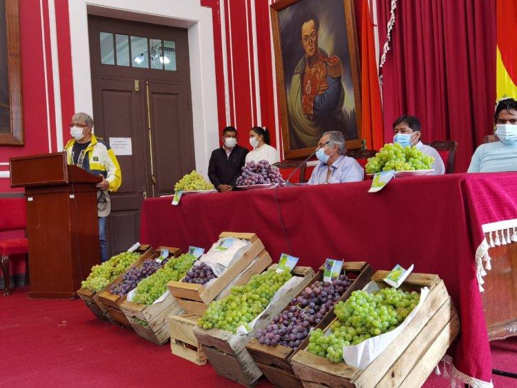 Lanzamiento de Exportación de la Uva de Mesa Tarijeña al Paraguay