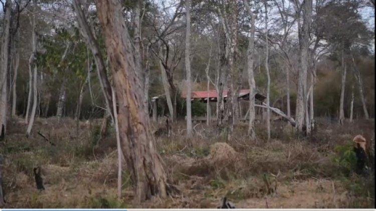 En Santa Cruz, hallan comunidades fantasma y asentamientos en áreas protegidas
