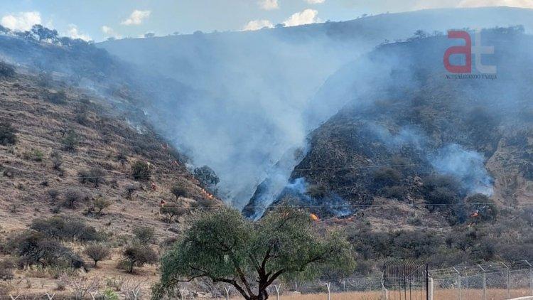 Oportuna labor de bomberos en Tarija evita incendios de Magnitud