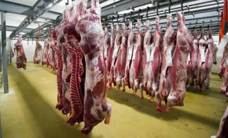 Bolivia exportó más 11 toneladas de carne bovina en lo que va del año