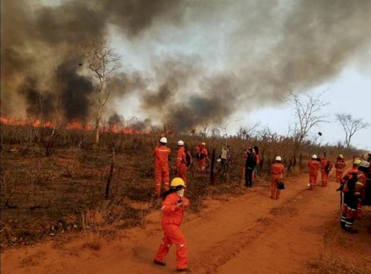 Tribunal de Derechos de la Naturaleza determina 'ecocidio' en la Chiquitanía en 2019